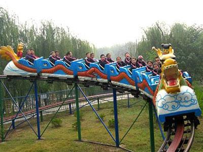 sliding dragon roller coaster for sale 03