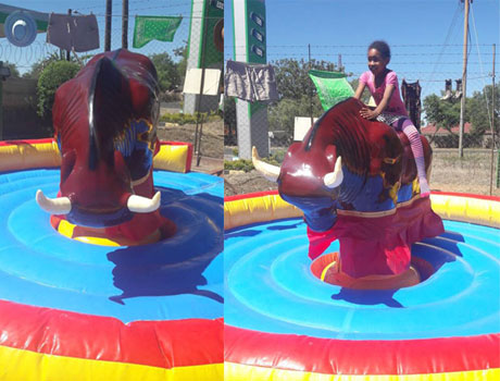 Beston Mechanical Bull Ride In South Africa