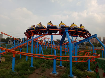 Cheap family roller coaster for sale 05
