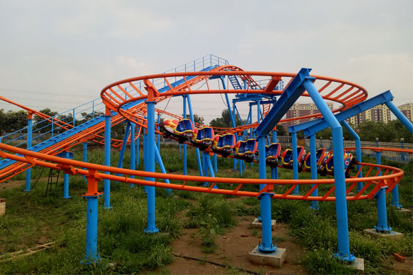 Cheap family roller coaster for sale