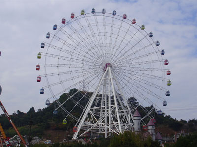 65 meters ferris wheel ride for sale