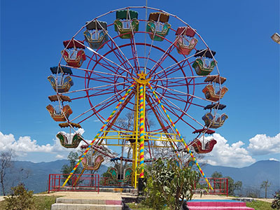 Ferris wheel ride for sale