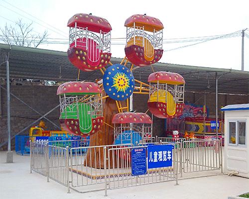 mini ferris wheel rides prices
