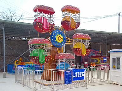 kid mini ferris wheel rides for sale
